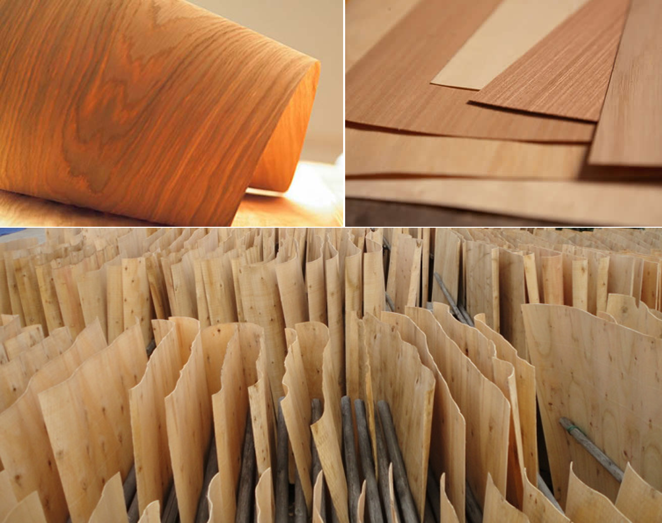 Keo dán veneer NB 325 dùng để dán gỗ nổi tiếng nhất hiện nay